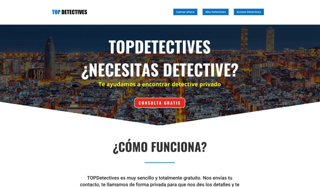 TOPDetectives